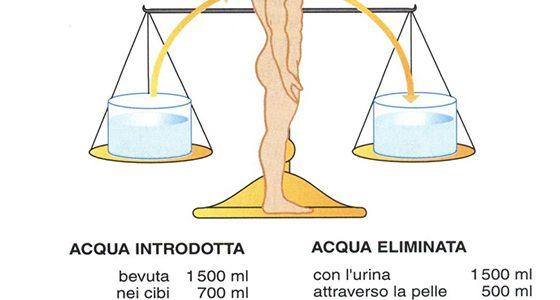 Bilancio idrico corporeo